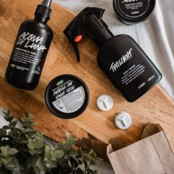 Lush Haul Lush Haul - Tea Tree Toner Tabs, Angels on Bare Skin Cleanser, Sleepy Body Lotion, Twilight Body Spray, Tea Tree Water Toner